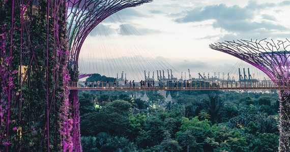 Sustainable Cities and Communities: Lessons from Madagascar, Ecuador, Singapore and the UK