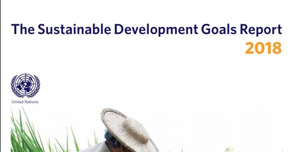 There are results in SDG action!